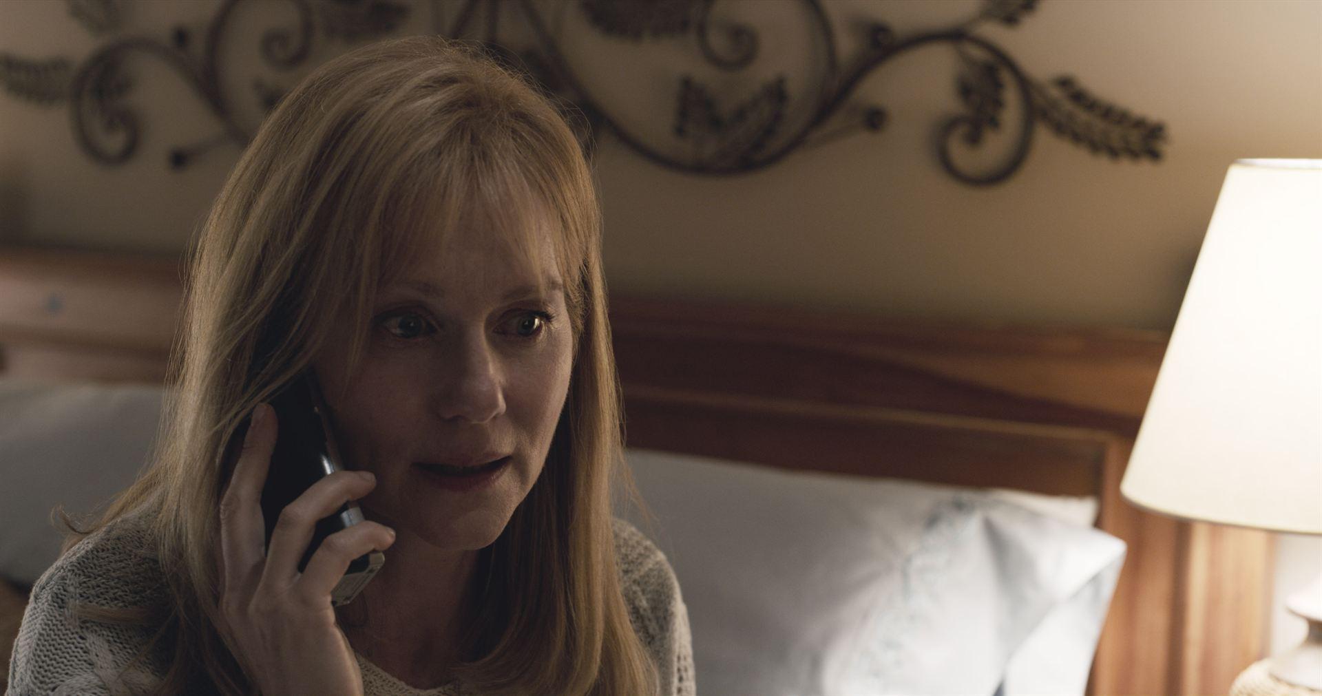 Lorrie Sullenberger (Laura Linney)