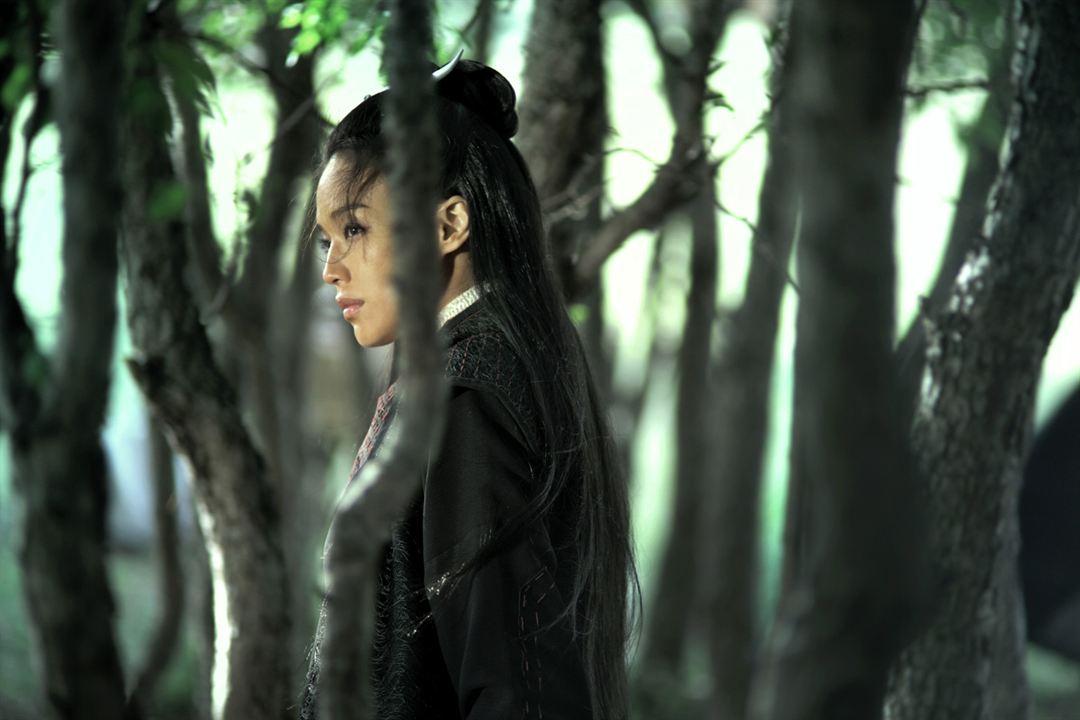 The Assassin : Photo Shu Qi
