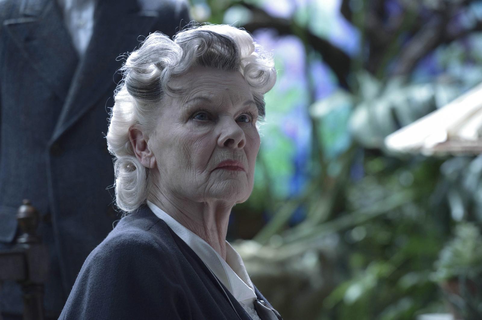 Miss Avocet (Judi Dench)