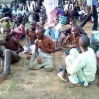 Au Nigeria, 259 personnes libérées dans une maison de correction islamique