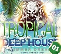TROPICAL DEEP HOUSE SUMMER LOVE 01
