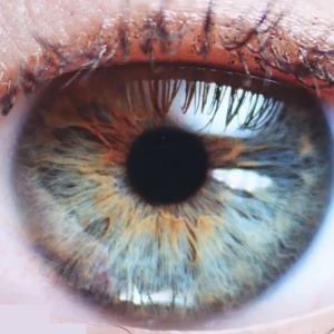 eye cln 300 - Index A-Z