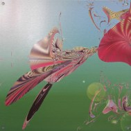 "Pollinator - Artist Lianne Todd Digital Art printed on metal, single edition 16x16"" $225.00"