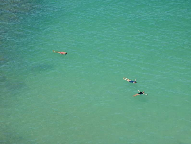 Color photograph of three swimmers floating on the surface of a calm shallow green ocean