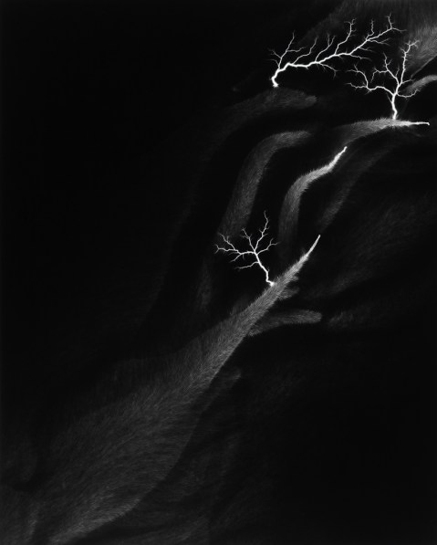 Black-and-white photograph of traces of white light with forked trails on a black background