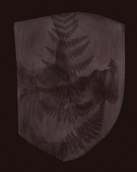 Buckler Fern (version I), March 6, 1839 or earlier, 2008, toned gelatin-silver print