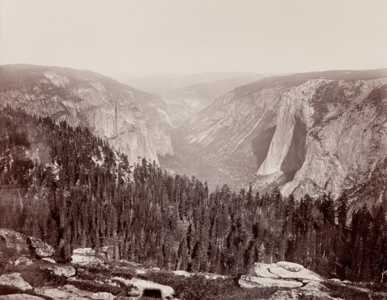 Albumen photograph of a wide valley between rounded rock with scattered pine forests