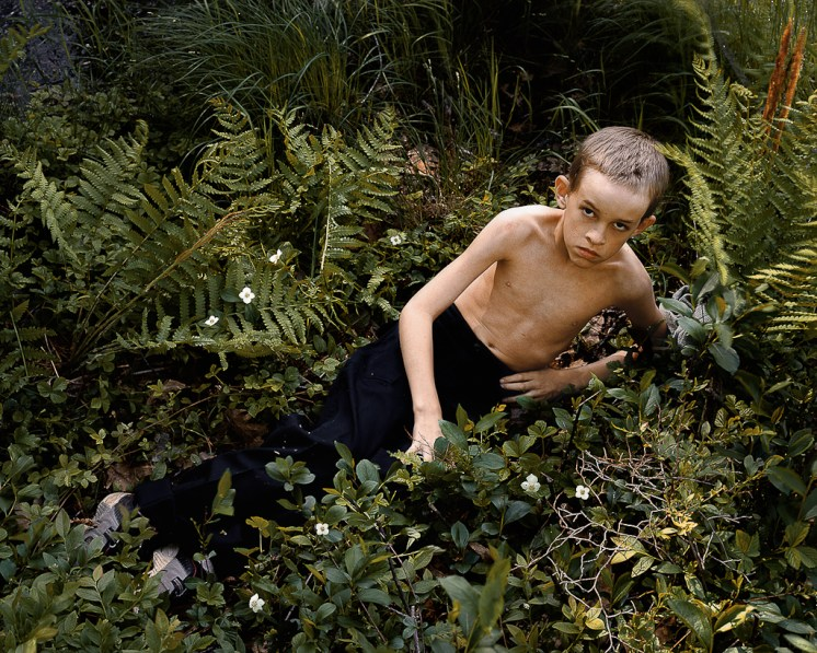 Color photograph of a shirtless boy propped up on his elbow in a patch of ferns