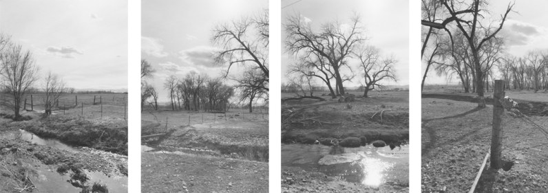 Four black-and-white photographs with trees, fence posts, and a small stream.