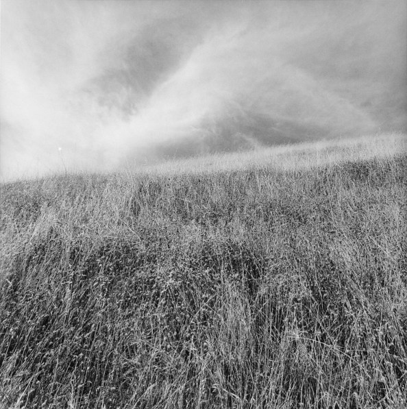 Black-and-white photograph of a grassy field with wispy clouds
