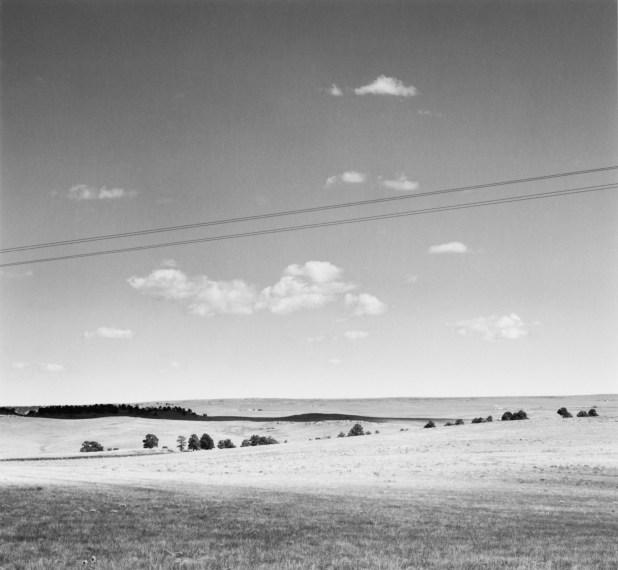 Grazing Land with Pines, near Falcon, Colorado, 1968-72, gelatin-silver print