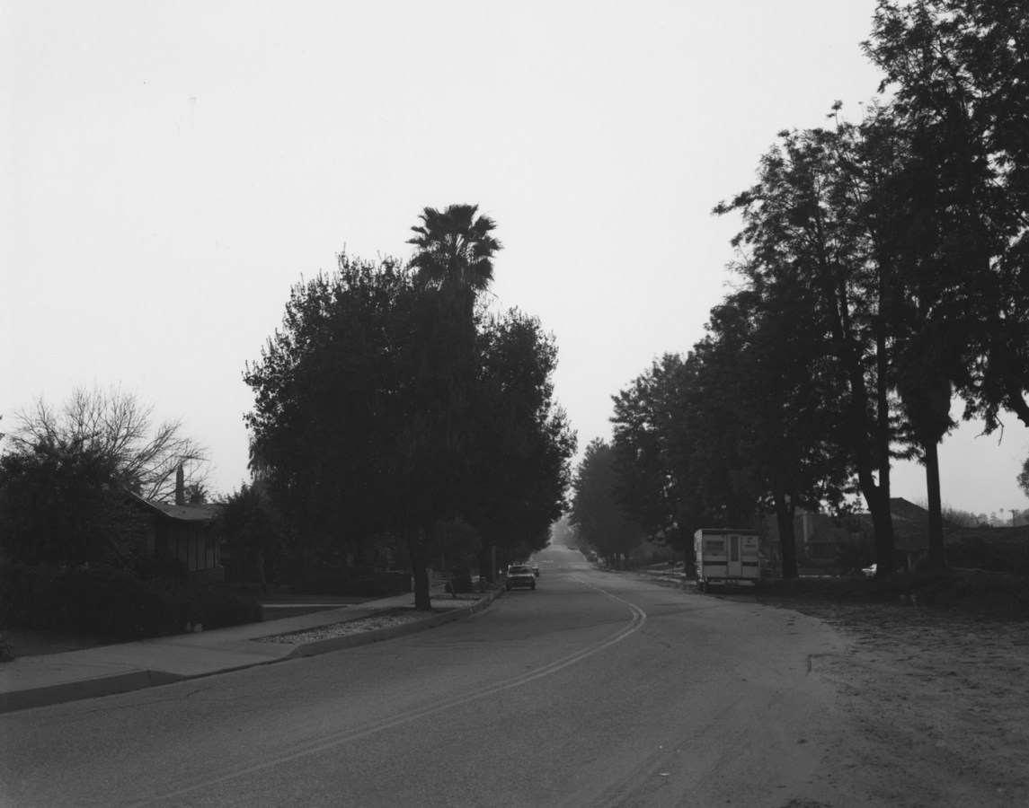 Black-and-white photograph of a treelined street with parked cars