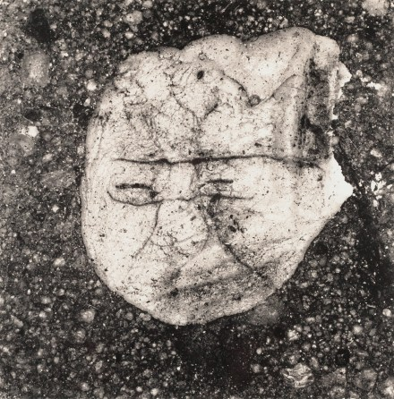 Black and white photograph of a chewed up piece of gum on asphalt