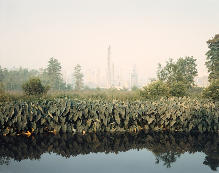 Roadside Vegetation and Orion Refining Corporation, Good Hope, Louisiana , 1998, pigment print