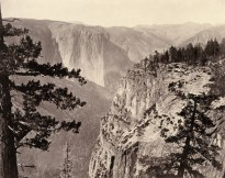 Black and white photograph of a rocky canyon with pine trees in the foreground