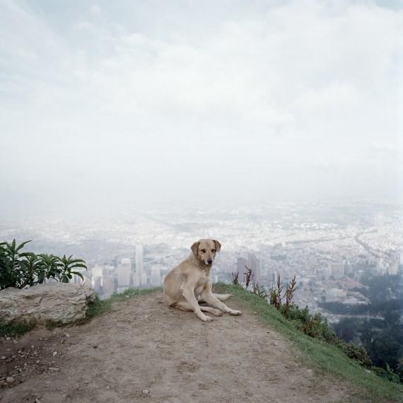 Untitled 02, Bogotá, 2003