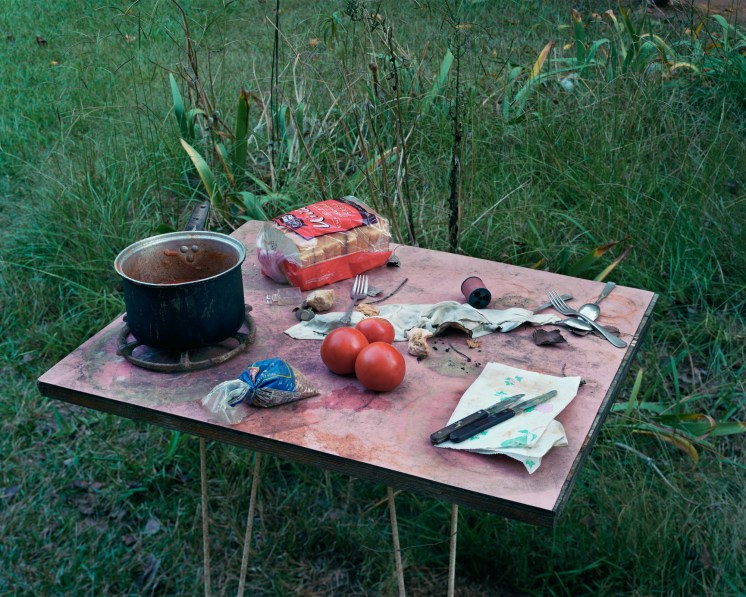 Color photograph of a three tomatoes, a package of bread, a pot and scattered utensils on a camp table in tall grass