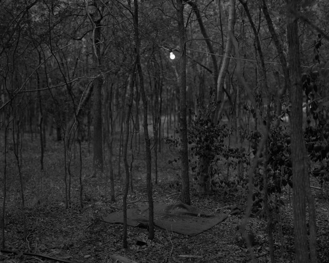 Black-and-white photograph of a single lightbulb strung up amidst bare trees