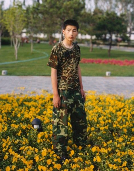 Color photograph of a boy in a camouflage t-shirt and cargo pants standing in a bed of yellow flowers in a park