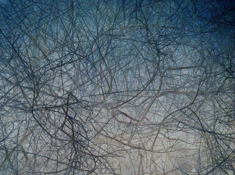 Inverted color photograph of tangled thin branches