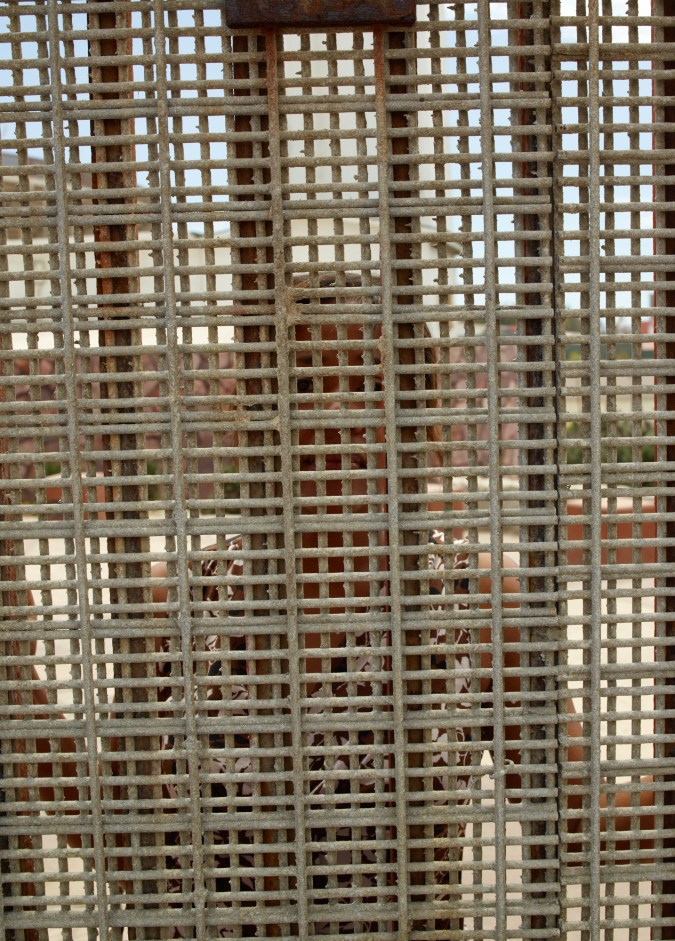 Color photograph of a woman looking through and obscured by a metal lattice and fence posts