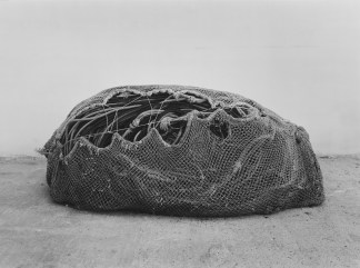 Black-and-white horizontal photograph of fishing lines bundled together inside a fishing net.