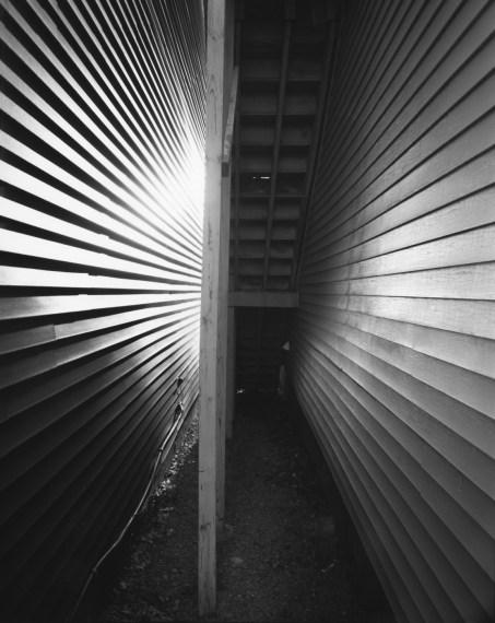 NICHOLAS NIXON, West Concord, Massachusetts, 2008, gelatin-silver contact print