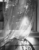 Black and white photograph of sunlight filtering through a lace curtain