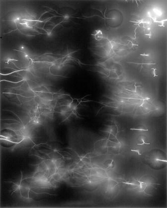 Hiroshi Sugimoto, Lightning Fields 6, 2006, gelatin-silver print