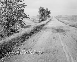 A black and white photograph of a road, with grass along either side. A pile of fallen leaves is in the foreground.