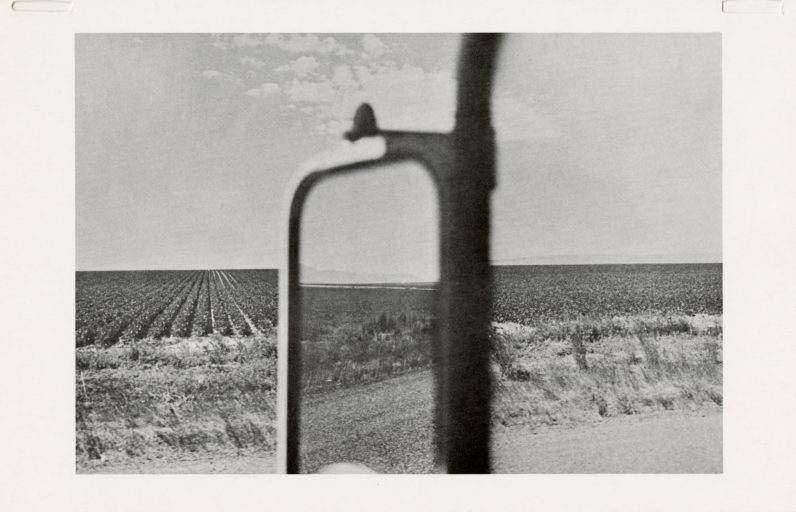 Announcement for our second exhibition, Lee Friedlander, 1979