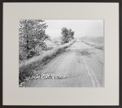 A framed black and white photograph of a road, with grass along either side. A pile of fallen leaves is in the foreground.