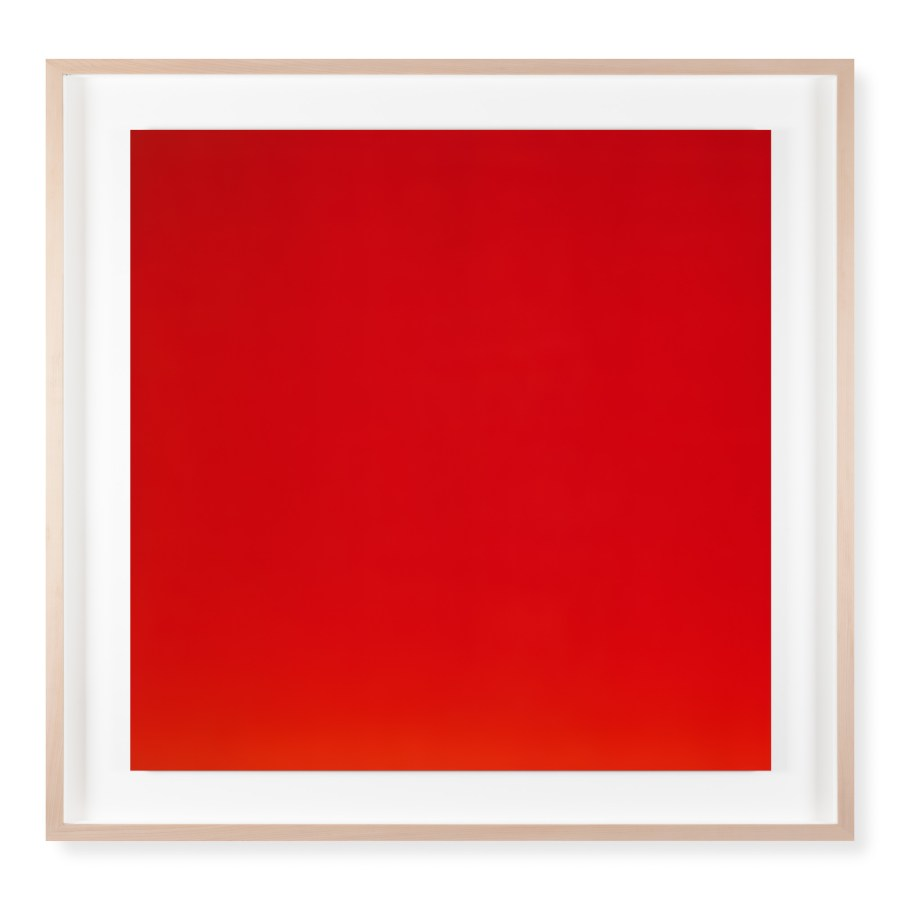 A framed photograph of a bright red color field