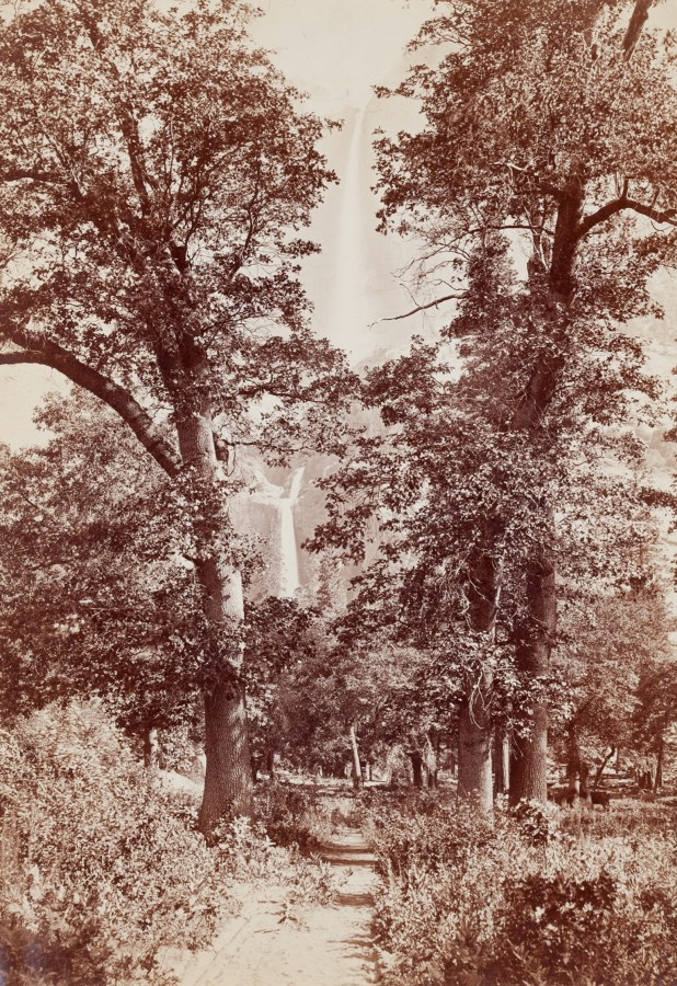 Ninteteenth century photograph of a trail through trees with a distant waterfall in the background