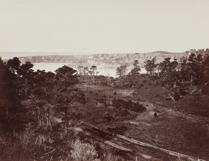 Ninteteenth century photograph of lightly forested fields with the Pacific Ocean in the background
