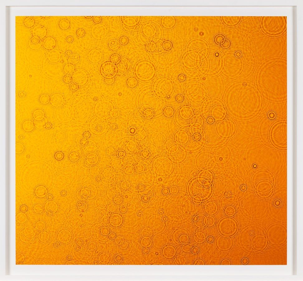 Framed color photograph of a radiant yellow field of color punctuated by concentric circles of water drops