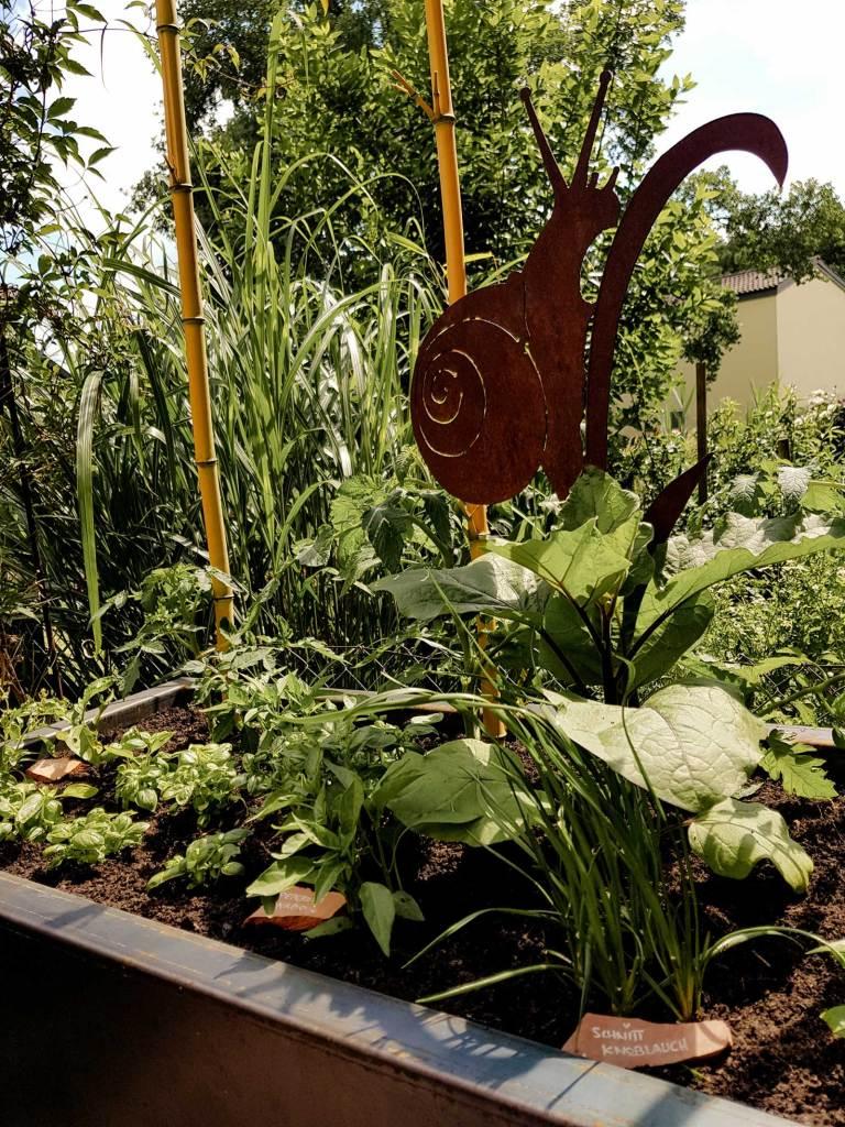 Gemüsegarten im Hochbeet