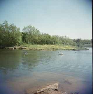 Wardley Lake