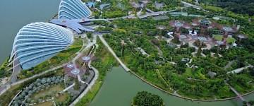 Gardens by the Bay – ogrody Singapuru.