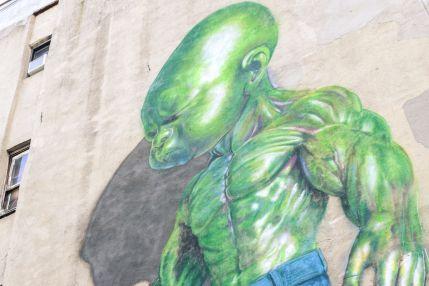 podobne murale można zobaczyć w dzielnicy Wynwood w Miami