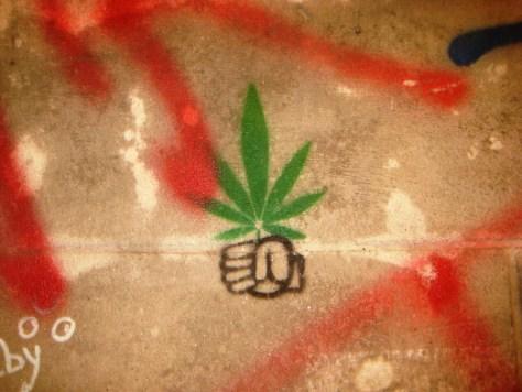 strasbourg 03.12.12 Ps cannabis stencil