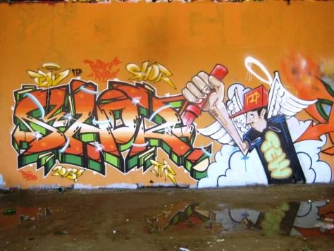mai 2013_graffiti_besancon_rip_Tew (10)