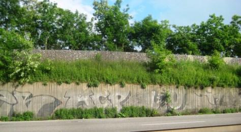strasbourg_graffiti_26.05.13_ACP