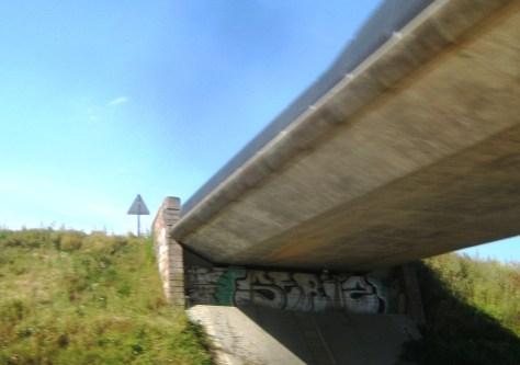 seriz, graffiti, alsace, aout2013