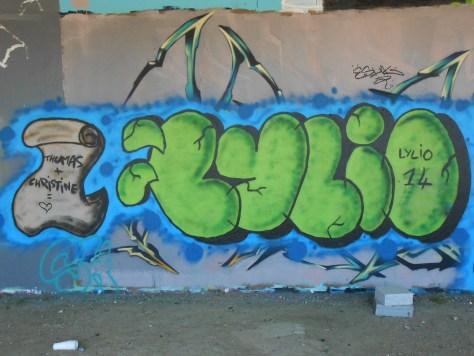 15.06.2014 - besancon - graffiti - Lylio (2)