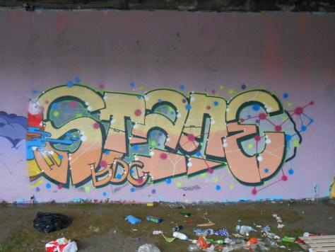 besancon_novembre 2014-Stane-graffiti