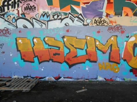 besancon graffiti avril 2015 Haem, Camra (3)