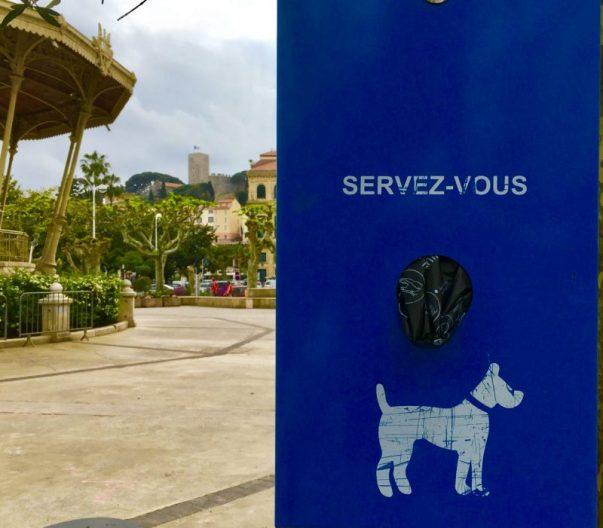 Educazione a Cannes
