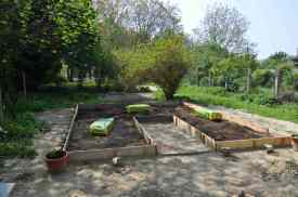 Vegetables garden to be