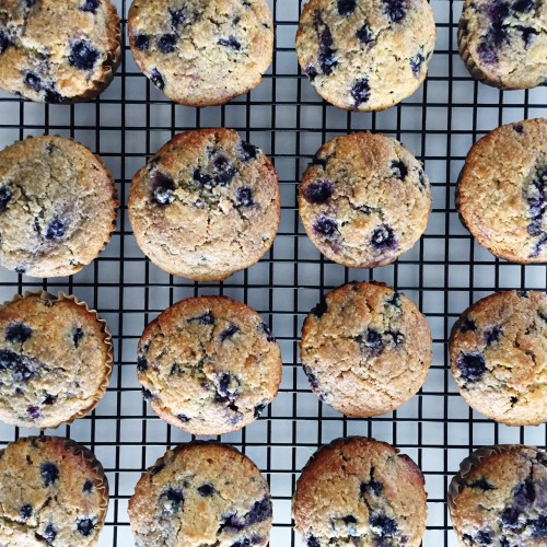 Lemon Blueberry Oat Bran Muffins